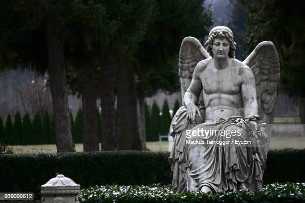 statue against trees at park - male angel stock photos and pictures