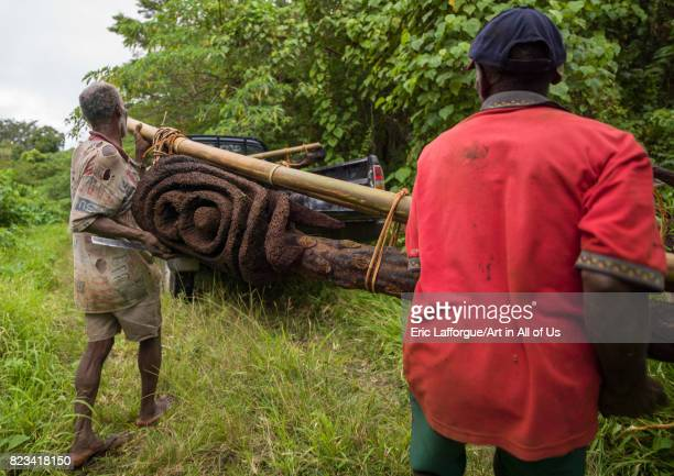 Statue artists carrying a carved fern tree in the forest Malampa Province Malekula Island Vanuatu on August 25 2007 in Malekula Island Vanuatu