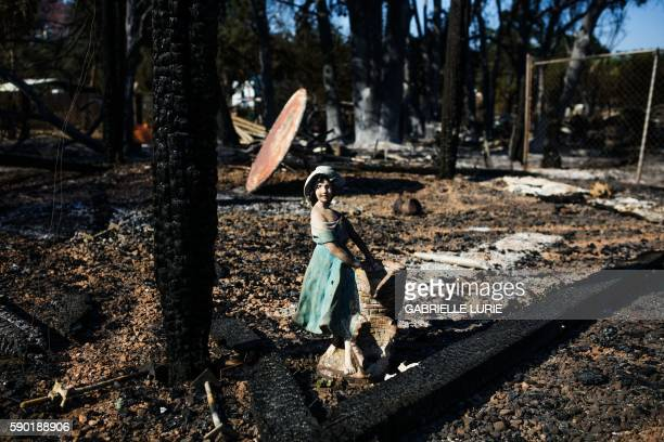 A statue can be seen in the remains of a home which was destroyed in the Clayton Fire which burned through Lower Lake California on August 16 2016 A...