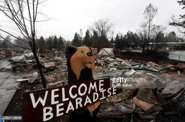 A statue of a bear remains in front of a restaurant that was destroyed by the Camp Fire on November 21 2018 in Paradise California Fueled by high...