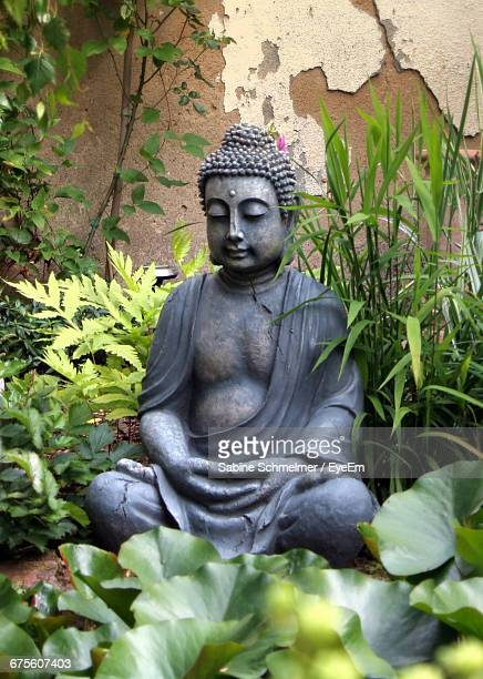 933 Garden Buddha Statues Photos And Premium High Res Pictures Getty Images