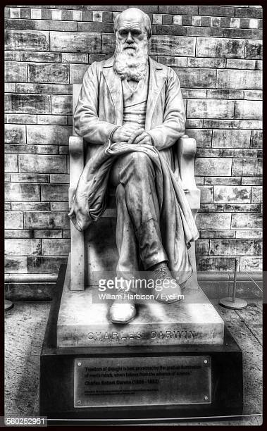 statue of charles darwin - charles darwin stock pictures, royalty-free photos & images