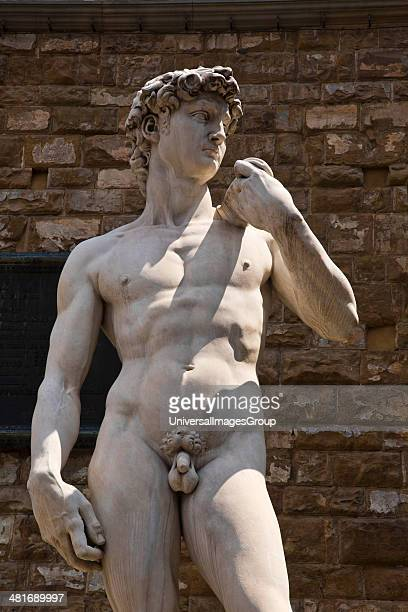 Statue of David in front of the Palazzo Vecchio Piazza Della Signoria Florence Tuscany Italy