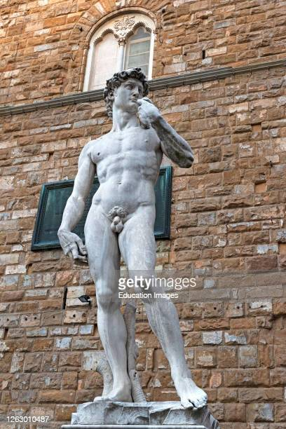 Statue of david in piazza della signoria, florence, tuscany, italy.