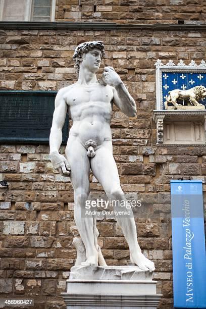 Statue of David near Ufizzi gallery in Florence