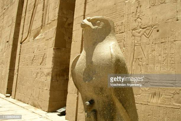 statue of falcon bird (horus), edfu - argenberg stock pictures, royalty-free photos & images