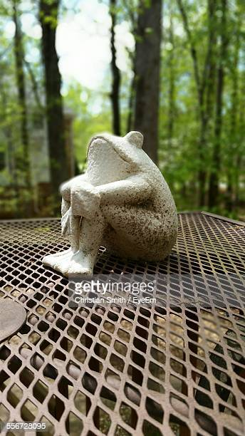 Statue Of Frog On Metal Table