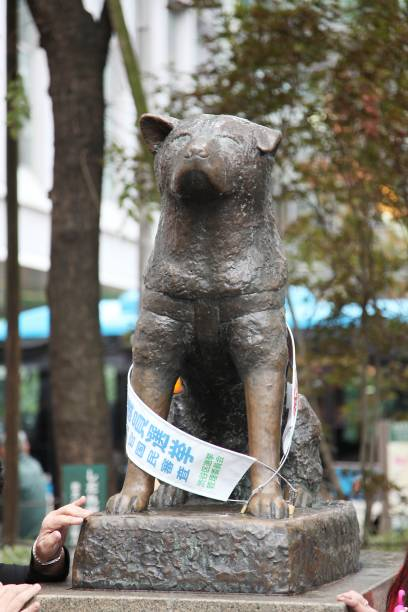 Hachiko Statue Pictures Getty Images