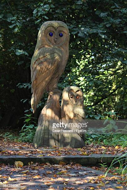 Statue Of Owl In Park
