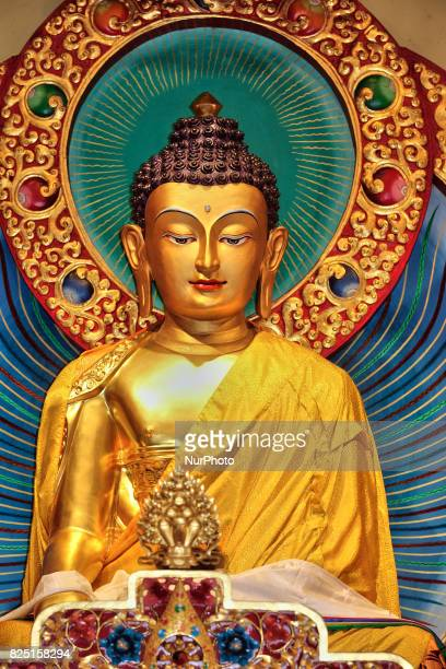 buddha stock photos and pictures getty images
