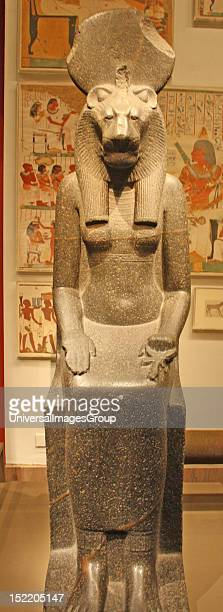 Statue of the Goddess Sekhmet New Kingdom Dynasty 18 13901152 BC Sekhmet represented the forces of violence unexpected disaster and illness