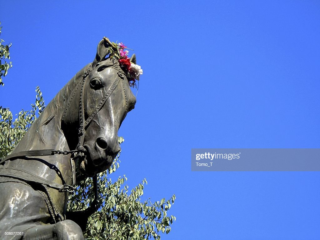 Statue of the Horse : Stock Photo