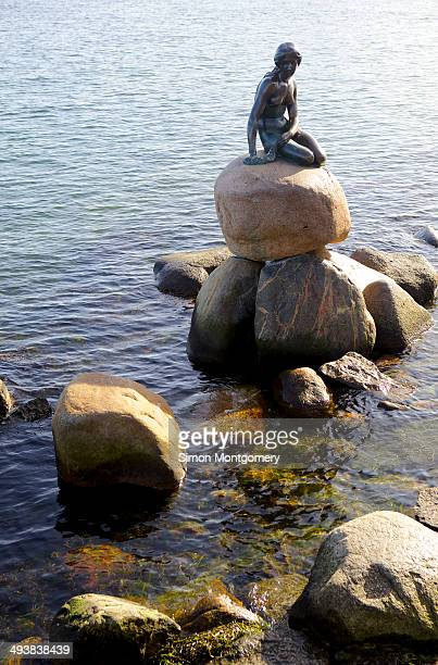 Statue of The Little Mermaid in Copenhagen, Denmark.