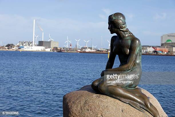 statue of the little mermaid in copenhagen, denmark, scandinavia, europe - little mermaid stock photos and pictures