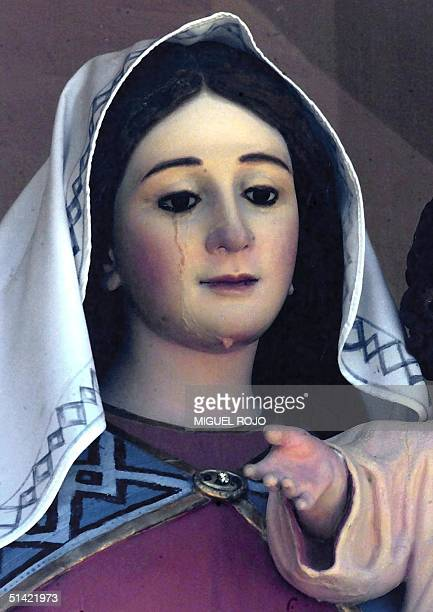 Statue of the Virgin Mary is pictured 18 December 2000 in Rosario, Uruguay. Ten days ago a group of Catholic faithful said the the Virgin shed a tear...