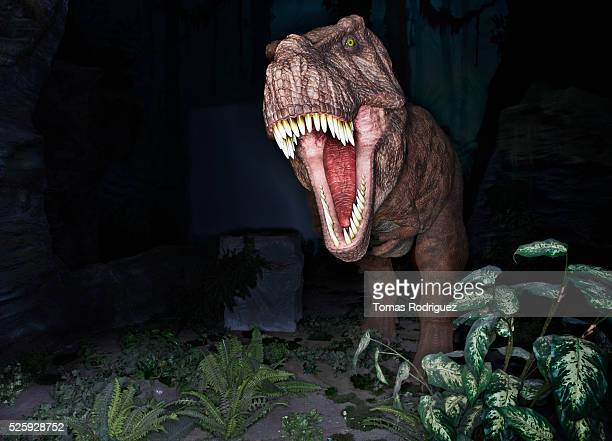 statue of t-rex - tyrannosaurus rex stock photos and pictures