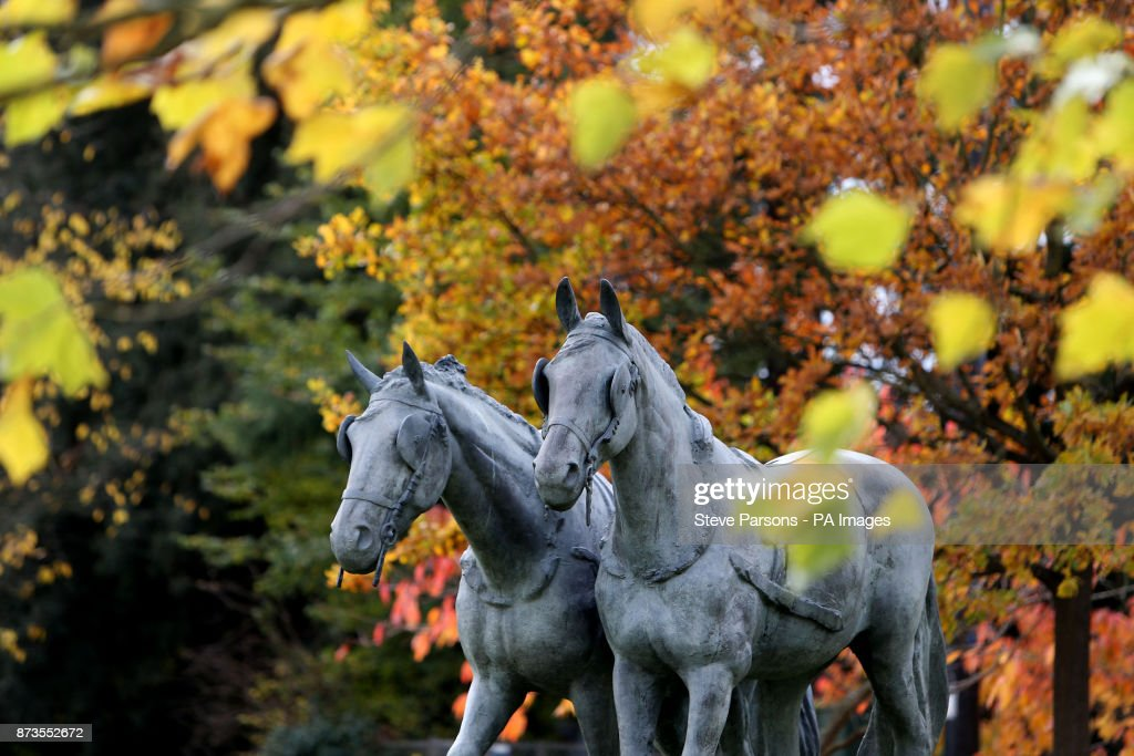 A statue of two Windsor Greys, Daniel and Storm, who draw the royal carriages on state occasions, stand out against the background of autumn leaves in Windsor, Berkshire, as temperatures dropped as low as minus 3C (26.6F) across large swathes of the UK last night.