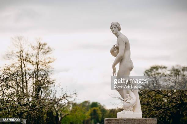 statue of venus in petergof (summer) palace park, st. petersburg, russia - venus roman goddess stock pictures, royalty-free photos & images