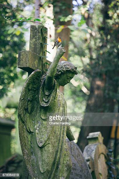 Statue of woman with red robin perched on an outstretched finger, Highgate Cemetery, London, England, United Kingdom, Europe