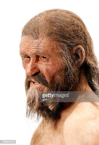 A statue representing an iceman named Oetzi discovered on 1991 in the Italian Schnal Valley glacier is displayed at the Archaeological Museu of...