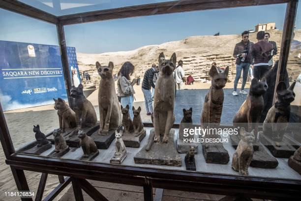 Statues of cats are displayed after the announcement of a new discovery carried out by an Egyptian archaeological team in Giza's Saqqara necropolis...