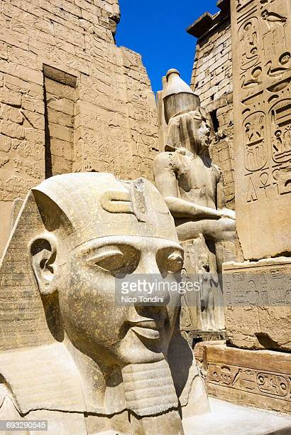 Statues of Ramses,Temple of Luxor,Egypt, Africa