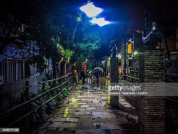 Statues On Footpath Amidst Houses At Night