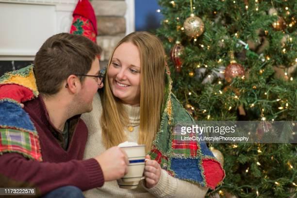 gemütlich bleiben zu weihnachten - kieferngewächse stock-fotos und bilder
