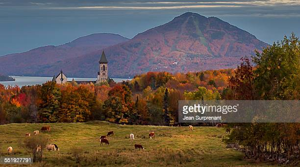 st-benoit-sur-le-lac - eastern townships stock pictures, royalty-free photos & images