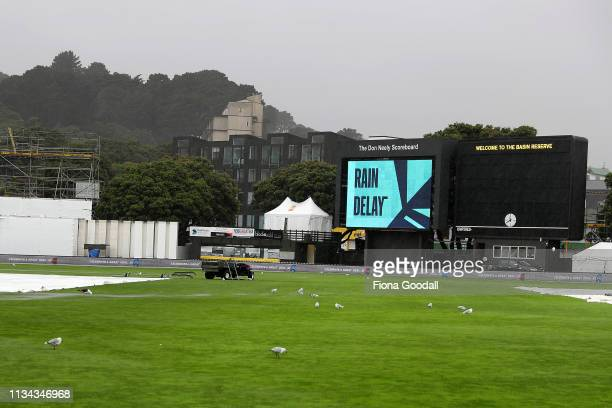 Steady rain delays play during day 1 of the second Test Series between New Zealand and Bangladesh at Basin Reserve on March 08 2019 in Wellington New...