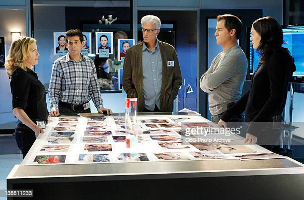 "Stealing Home"" -- Julie Finlay, , D.B. Russell , Nick Stokes and Sara Sidle all want answers as they piece things together on CSI: CRIME SCENE..."
