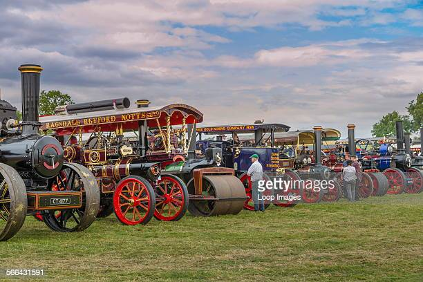 Steam engines lined up at a rally