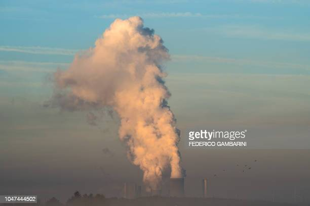 Steam from the chimneys of Niederaussen lignite-fired power plant rise above the morning fog in Roggendorf, western Germany in October 8, 2018. /...