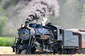 Steam Passenger Train Pulling into Picnic