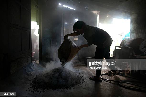 Steam rises as Sari Artini pours freshly roasted beans onto the floor January 20 2011 in Pupuan village Bali Indonesia Sari Artini and her husband...