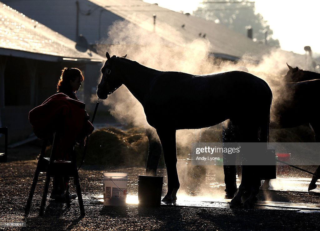 Steam rises from a horse as it is washed in the barn area during morning training in preperation for the 2013 Kentucky Derby at Churchill Downs on April 30, 2013 in Louisville, Kentucky.