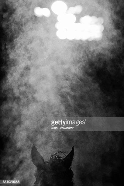 Steam rises from a horse on a cold evening at Chelmsford racecourse on January 5 2017 in Chelmsford England