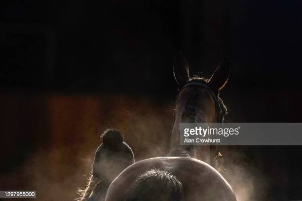 Steam rises from a runner as it returns to the stables after racing at Ascot Racecourse on January 23, 2021 in Ascot, England. Due to the Coronavirus...
