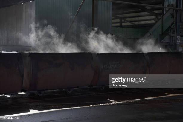 Steam rises from bunches of oil palm fruits inside transportation carts during the extraction processing at the Empresa Reforestada de Palma de Peten...