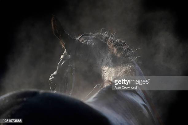 Steam rises from runners having been hosed down after racing at Warwick Racecourse on December 13 2018 in Warwick England