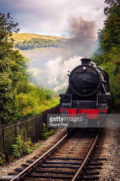 Steam Train Rolling in at Berwyn Llangollen Wales