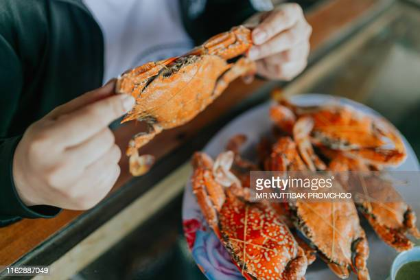steamed crab. - hairy asian stock pictures, royalty-free photos & images