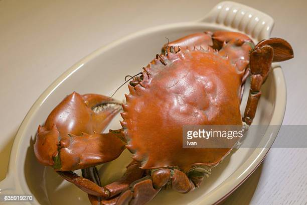steamed delicious yangcheng lake crabs - chilli crab stock photos and pictures