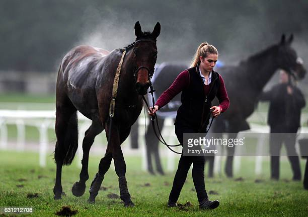 A steaming horse is lead back to the parade ring at Chepstow Racecourse on January 8 2017 in Chepstow Wales