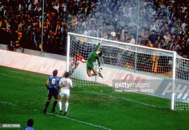 Steaua Bucharest goalkeeper Helmut Ducadam tips the ball over the bar