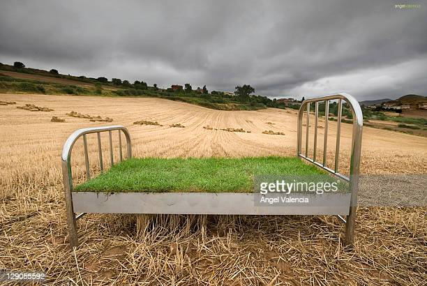 Steel bed in field
