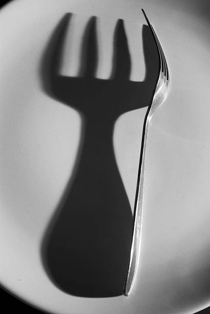Steel fork and its shadow on plate