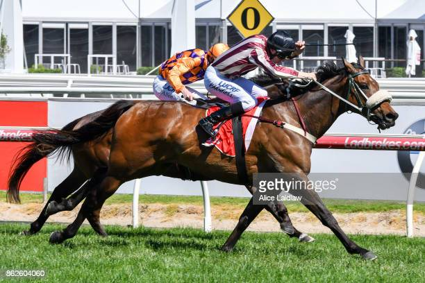 Steel Frost ridden by Todd Pannell wins the Ladbrokes Odds Boost Exotics Handicap at Caulfield Racecourse on October 18 2017 in Caulfield Australia