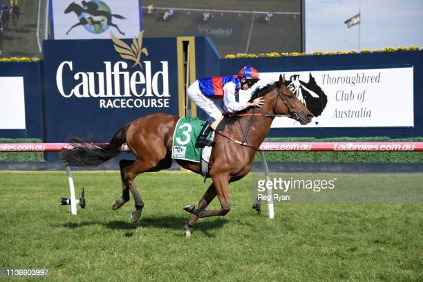 Steel Prince ridden by Michael Poy wins the Grunt Standing @ Yulong Hcp at Caulfield Racecourse on April 13 2019 in Caulfield Australia