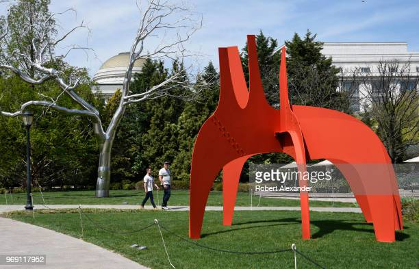 A 1974 steel sculpture by Alexander Calder titled 'Cheval Rouge ' is among the artworks on display in the National Gallery of Art Sculpture Garden in...
